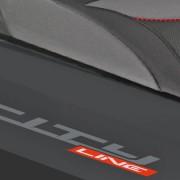 Rieju Roller Cityline 300 Detailansicht Logo