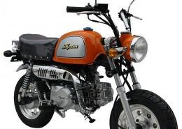 SkyTeam Motorrad Gorilla 50 in Farbe Orange