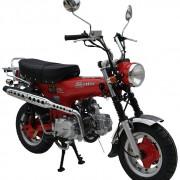 SkyTeam Motorrad Skymax 50 in Farbe Rot