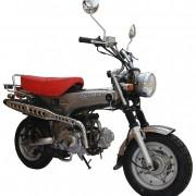 SkyTeam Motorrad Skymax 50 in Farbe Silber