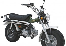SkyTeam Motorrad T-Rex 125 in Farbe Grün